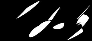 Korey's Signature