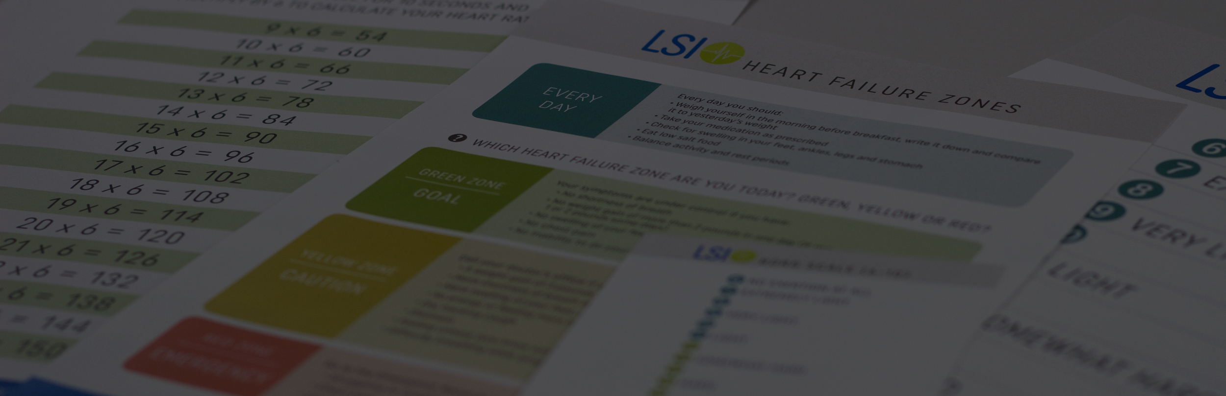 LSI-Educational-library